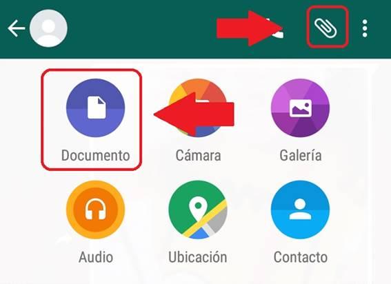 Como enviar PDF por WhatsApp