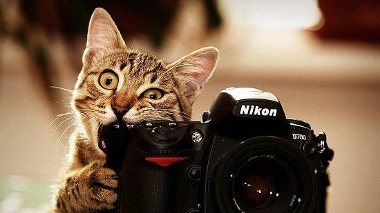 camara-digital-de-fotos- (2)