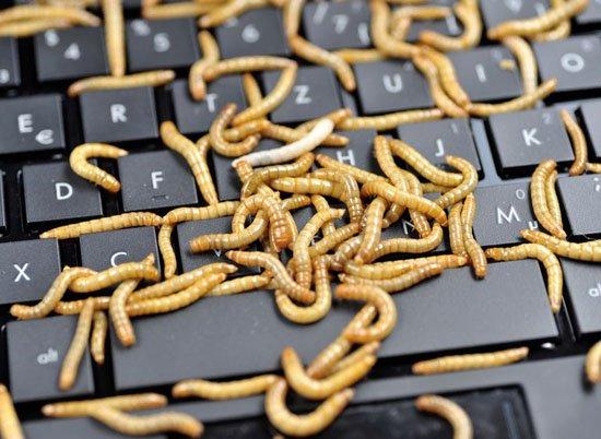 Todo-sobre-malware- (8)