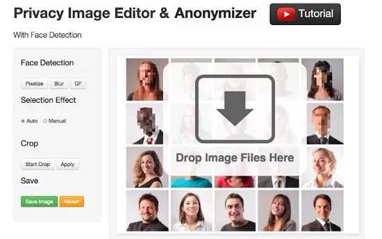 Pixelar una foto con Facepixelizer